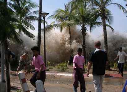 Tsunami 2004, January 2005