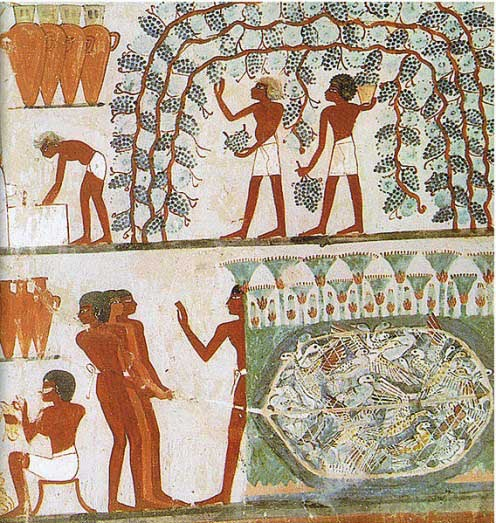 Ancient Egyptian Agriculture, Farming, Diet, Animals - Crystalinks