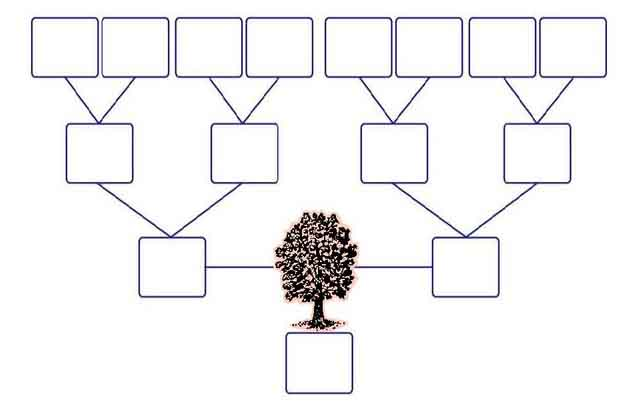 generation family tree template with siblings