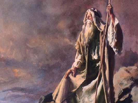 отзывы:: почему моисей не вошел в землю обетованную является неугомонной натурой