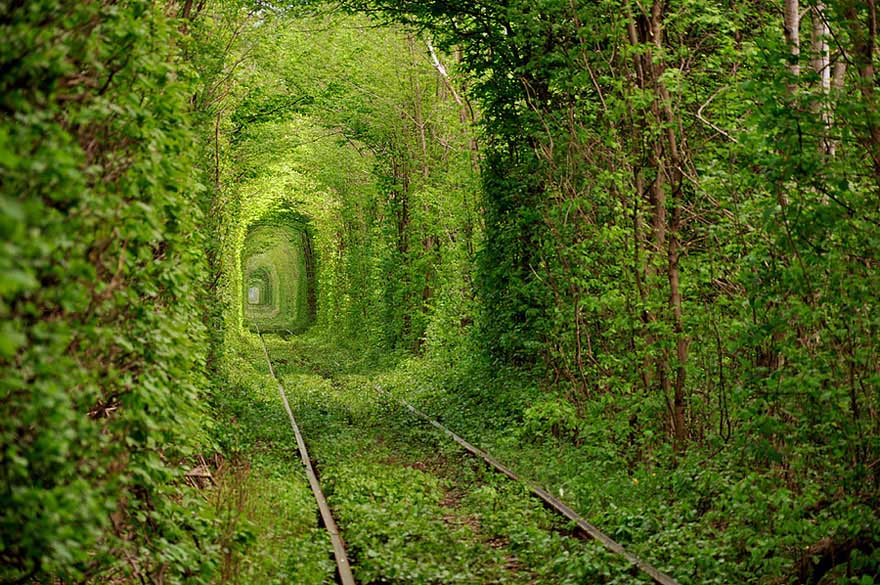 TunnelUkraine - ღ✫ Polling for Cyber Shots Sep 2014  ღ✫