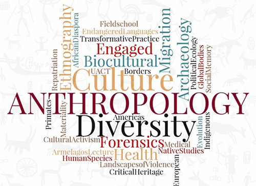 Words that relate to anthropology in a word cloud