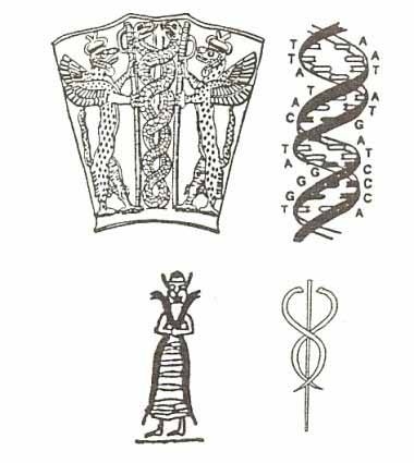Draco Constellation  Mythology - Crystalinks