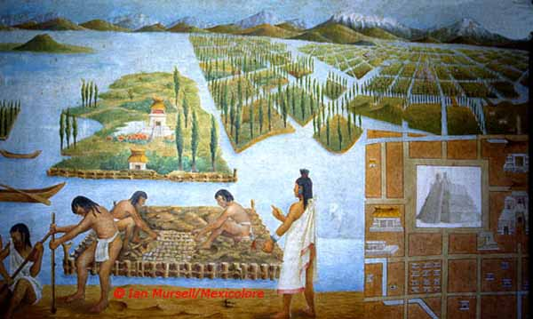 Agriculture : Aztec Agriculture