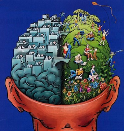 the connection between nature and the human mind Environmental influences on brain development [abbreviations the volume of the human brain increases more during the first year of life than at any other time development therefore constitutes more than the resultant of the interaction between nature and nurture.