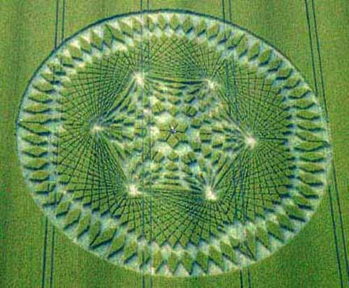 Crop Circles Down the Rabbit Hole