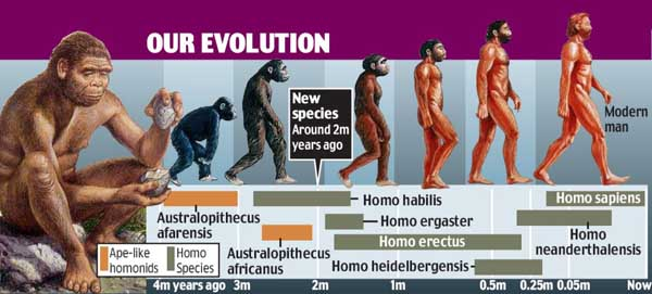 Early Humans Evolution New species of early hominid