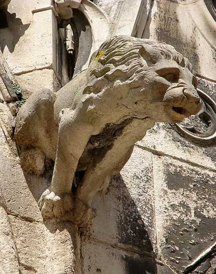 Gargoyle In Form Of A Lion Cathedral Saint Etienne De Meaux