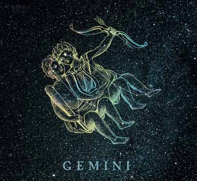 Image result for gemini