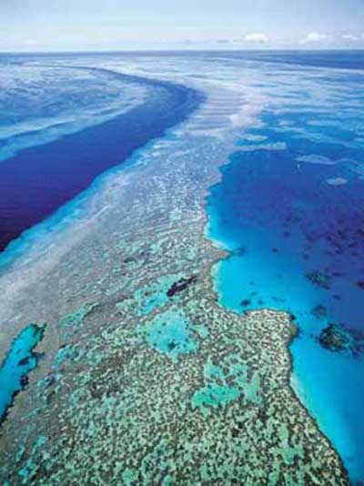 The Great Barrier Reef is a distinct feature of the East Australian