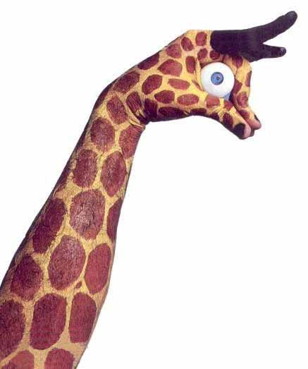 what does a giraffe symbolize