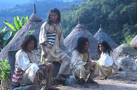 the kogi indians