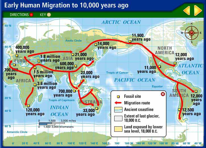 Human Migrations The Migration - What Did