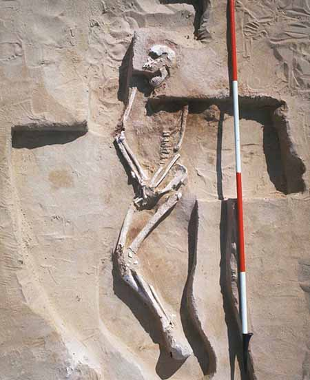 Mungo Man: What to do next with Australia's oldest human remains?