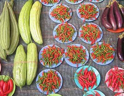 organic vs conventional foods essay