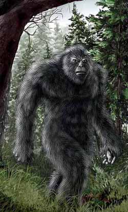 Ape Creatures Bigfoot Sasquatch Yeti Yowie More