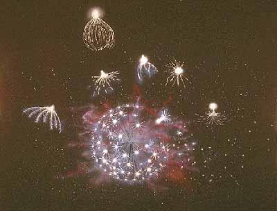 Star Seeds - Star People - Crystalinks