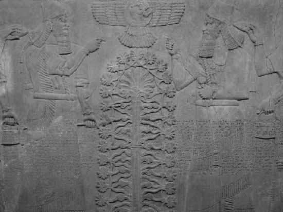 Achaemenid empire cyrus the great darius the great xerxes the great