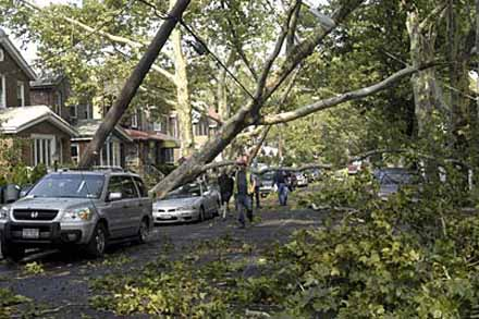 Tornado in Bay Ridge, August 8, 2007