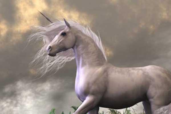 unicorns history myth magic legend news crystalinks