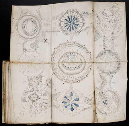 Voynich Manuscript Facsimile Voynich Manuscript Decoded