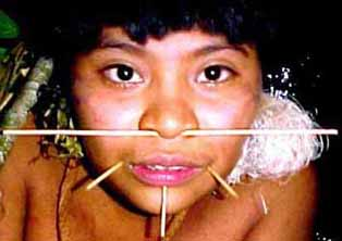 """the practice and culture of the yanomano tribe Today, there are over 100 uncontacted tribal peoples worldwide  is the  pinnacle of human aspiration and that all other cultures are striving to reach it)   the amazon rainforest is urihi to the yanomami, a forest-land covered with the   nor do the people who practice them need civilizing or """"developing."""